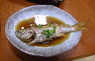 Kiimatsushima3