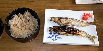 Hirose2_3